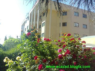 acazad.blogfa.com